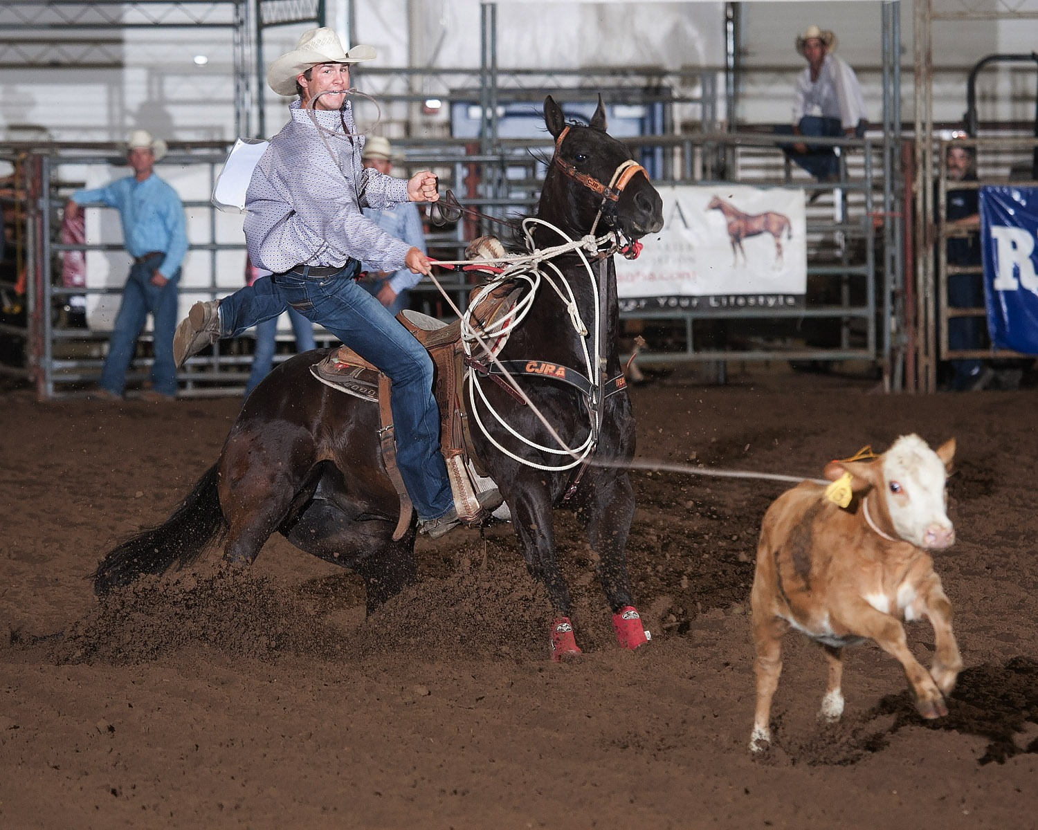 Trevor Kirchenschlager, Yuma, Colorado, shows his winning form in calf roping at the recent Kansas High School Rodeo, where he ended up third for the year to qualify for the National High School Rodeo Finals July 13-19, in Rock Springs, Wyoming. (Photo courtesy Kent Kerschner, www.fotocowboy.com, kent@fotocowboy.com.)
