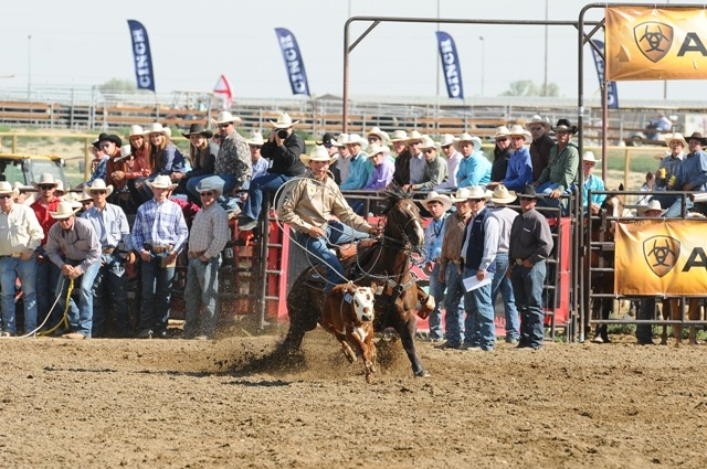 Cooper Martin of Alma rode his 12-year-old Quarter Horse gelding called Junior to win the first go-round en route to becoming tie-down calf roping champion at the recent National High School Rodeo School Rodeo Finals in Rock Springs, Wyoming. Photo Credit: NHSRA/Jennings Rodeo Photography.