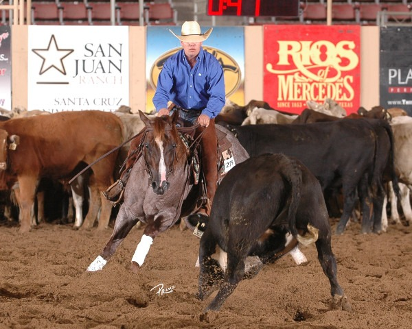 Kelby Phillips, Ashland, claimed the biggest win of his young career when he piloted Gardiner Quarter Horses' stallion, Hickory Holly Time (One Time Pepto x Hickorys Holly Cee x Doc's Hickory), to the NRCHA Intermediate Open Championship. Phillips and the roan stallion scored a total 648 points (214 herd/218.5 rein/215.5) for the win, which came with a check for $30,000.
