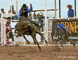 Champion bull rider Cooper Kanngieser, Attica, shows the fearless form that keeps him in the winner's circle when others his age have already retired from the most dangerous sport participated in by man.