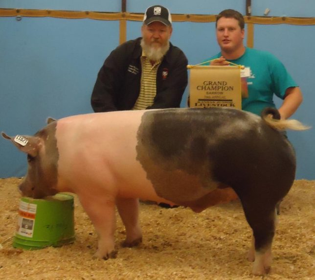 With the home raised grand champion barrow at the 2011 Kansas Junior Livestock Show in Wichita, Ethan Frantz of Frantz Show Pigs at Hillsboro has been involved in producing and showing hogs all of his life. That experience is put to use raising pig prospects that he sells to youth exhibitors over a wide area.