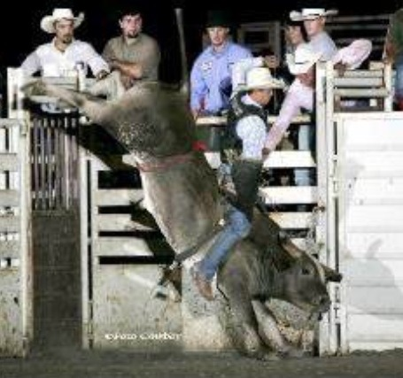 Brad Harris, Udall, shows his championship bull riding form on the renowned Grey Squirrel of the New Frontier Rodeo Company at Roxbury.