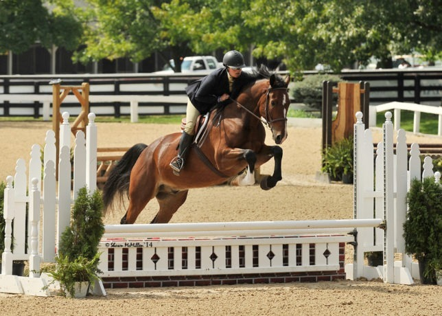 Over the fence and to the championship circle, Kylie Fowler of Fleetwood Riding Academy at Topeka participates in a jumping competition last year during a major show in Lexington, Kentucky.