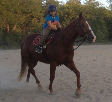 All ages from beginners to some of the most advance riders in the country come to Vermillion Valley Equine Center at Belvue to learn and improve their horseback riding skills.