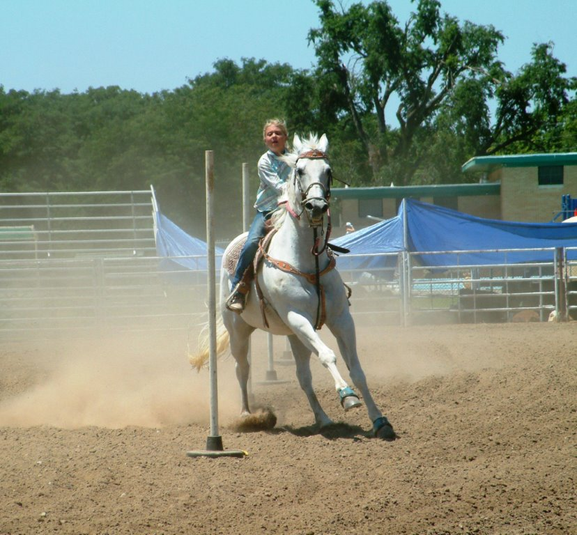 Going Strong At 29 Quarter Horse Mare Rio Takes Several