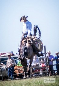 """Chris Potter of Maple City shows his form that, as a member of the Lonesome Pine Ranch team, won the ranch bronc riding division of the Kansas Championship Ranch Rodeo in Medicine Lodge, and helped Potter claim his """"Top Hand"""" trophy saddle at the rodeo, too."""