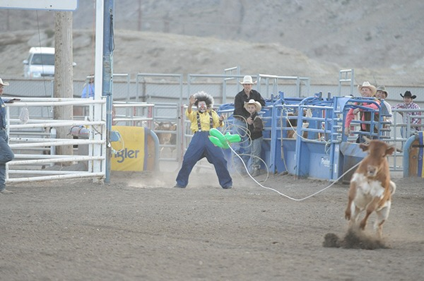 No shortage of surprises at the rodeo when Wolverine Andy Burelle is the clown, especially when he gets in the roping competition and makes a catch.