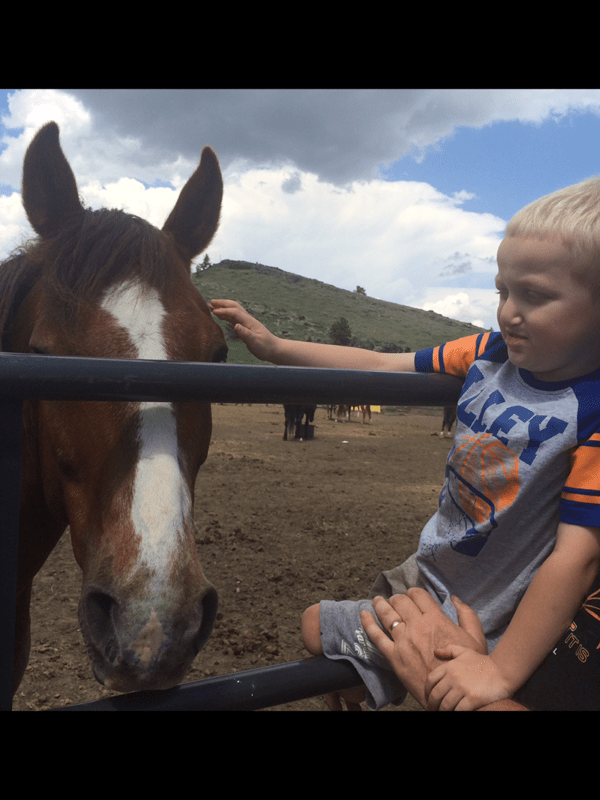 """Landon """"Bear"""" Lacy will be the Shriners Honoree during special ceremonies at the Eureka Pro Rodeo Saturday evening in Eureka. It'll be his first rodeo, but five-year-old Bear wanted to see a horse before that exciting occasion and, shown here, is getting introduced to horses for the first time."""