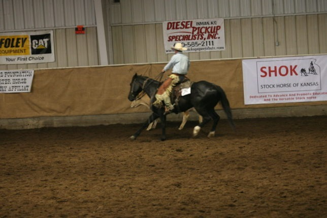 Participating in working ranch horse events throughout the state and around the country, Rex Buchman of the Bar U Ranch at Burdick rides Hollywood Tin Man in a Stock Horse of Kansas show at Kingman. The horse is by Black Hickory Mate, owned by Buchman's nephew, Spencer Harshman, and out of a mare tracing back to Hollywood Lilly, Foxy Gold Squaw and Little Gold Squaw.