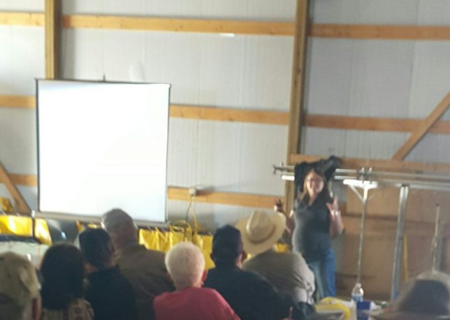 Even with some surface compaction being observed, yields and soil properties did not show a detriment to grain production with cattle grazing cover crops, while cattle returns were higher when grazed on winter annuals, according to Dr. Jaymelynn Farney, Parsons,  southeast area Extension beef systems specialist, at the Grazing Management Workshop. (Photo courtesy of Rod Schaub.)