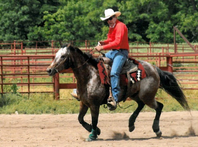 Just a few weeks, spring will arrive and horseback enthusiasts' spirits will be high for the season, but cold dreary winter days are time for coordinating equine conditioning plans to be ready to hit the trail, cattle roundup, pleasure riding, arena competition and the show pen.