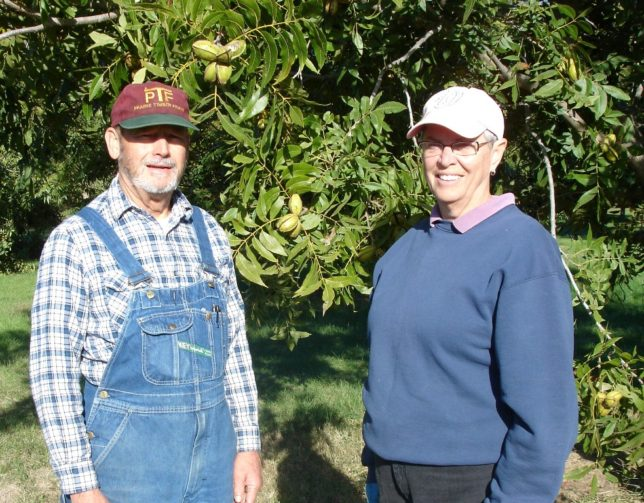 Brad and Lila Carter have more than 1,900 pecan trees in their farming operation, Jake Creek Pecans, near Paola in Miami County.