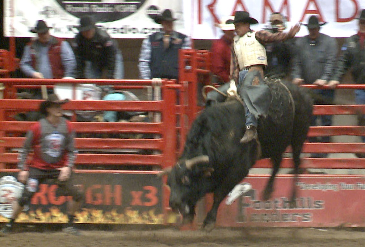 Champion bull rider Dave Samsel, a Waterville, Kansas, native will conduct the K-State Rodeo Club Bull Riding School, February 12-13, at Manhattan.