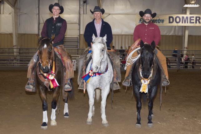Top-Horse-winners