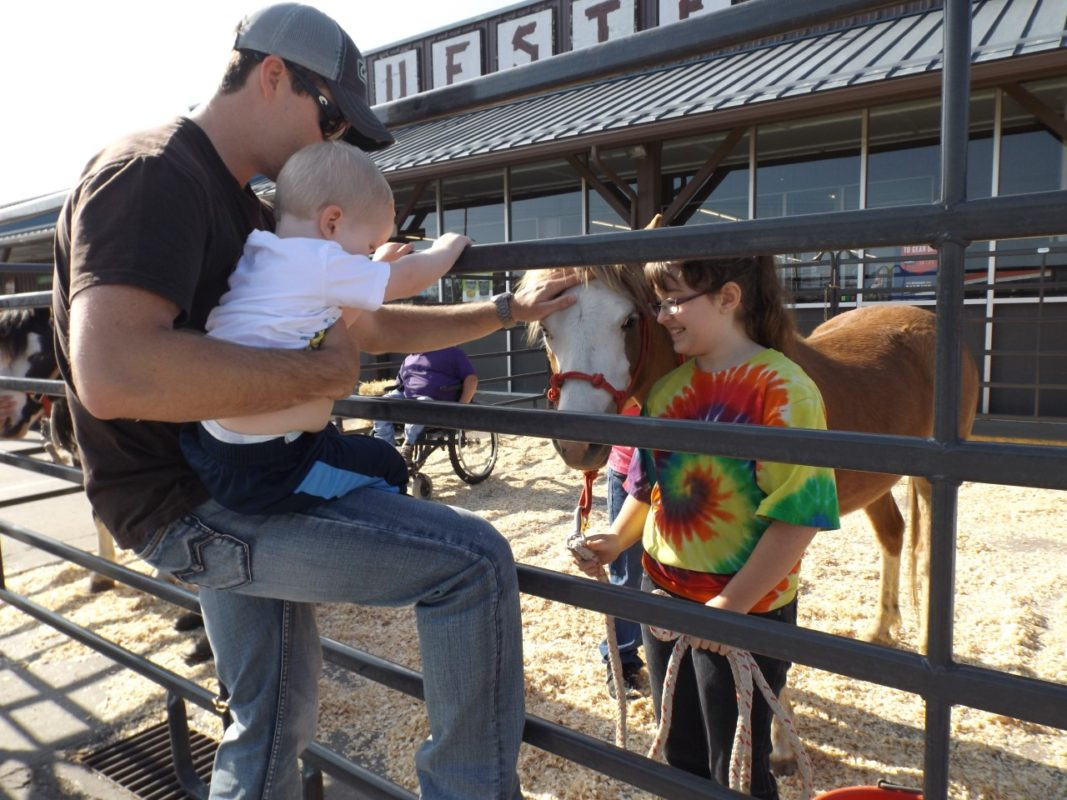 Seeing, petting and talking to real live horses from Blankley Gypsy Vanner Horses, O'Rear Welsh Pones and the Shooting Star Equine Rescue will be a highlight of Breyer Fun Day Saturday at Bluestem Farm & Ranch Supply, Emporia.