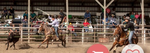 Riding his horse called Simba, Landon Koehn of Salina heads a steer for his heeler Chandler  Comfort in the team roping in a high school rodeo earlier this year at Lakin.
