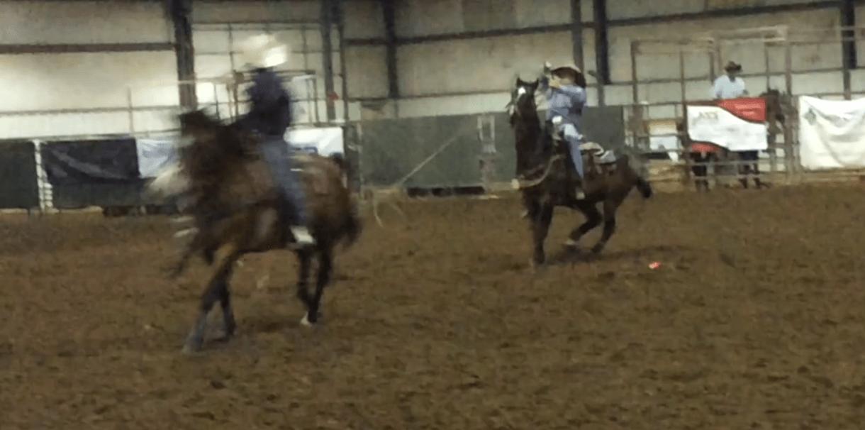 Rhett Murry of Belvue is heeling in a Kansas junior High School Rodeo on his brown gelding called Pecos.