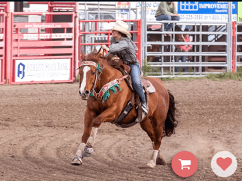 Riding her all-time favorite horse, a 17-year-old sorrel Quarter Horse gelding called Truck, Jayme Flowers of Garden City is one of the top barrel racers in the Kansas High Rodeo Association, and will be competing at the state finals in Topeka, June 1-4.
