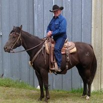 Hamilton rancher Wayne Bailey is a lifetime rodeo cowboy who'll serve as Grand Marshal for the Eureka Pro Rodeo parade Saturday afternoon, Aug. 20, at Eureka.