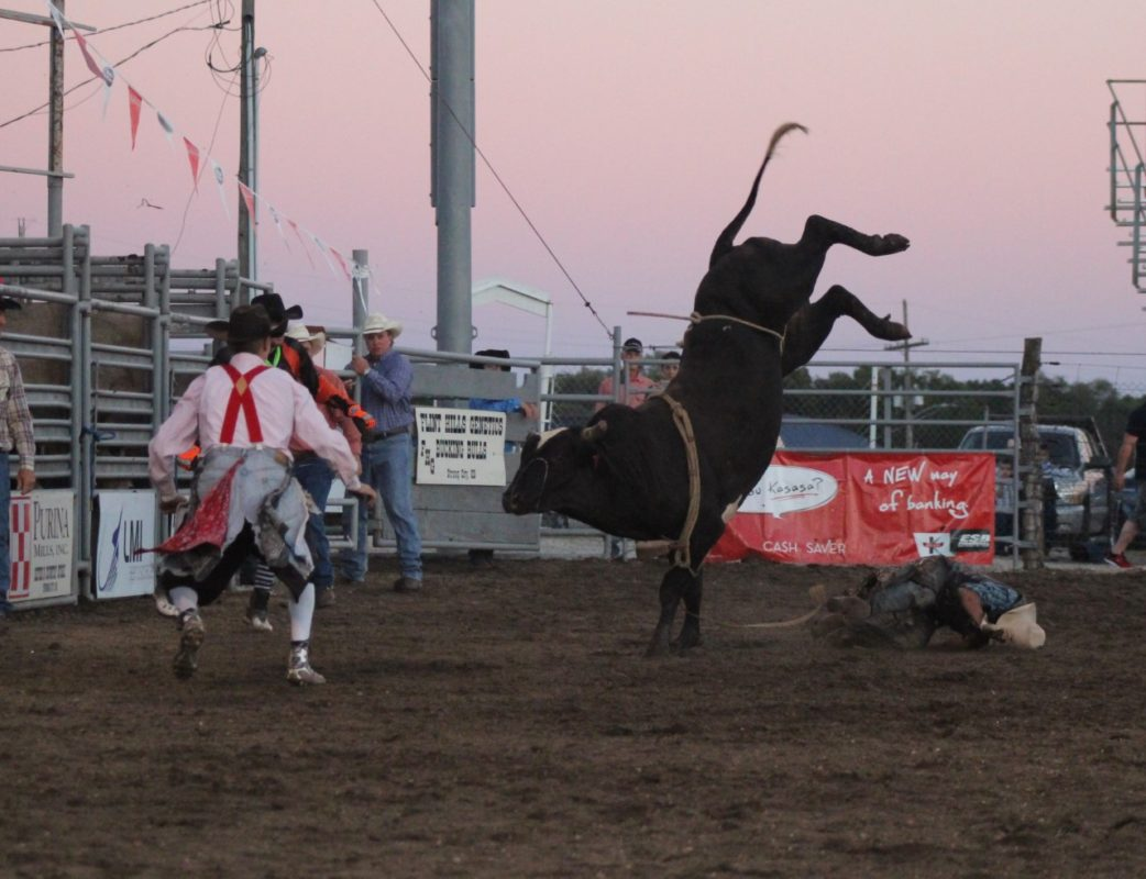 Another winning bull as Kenny Upton hits the ground off Flint Hills Genetics' bucking bull Delta at the Flint Hills Bull Blowout in Strong City.
