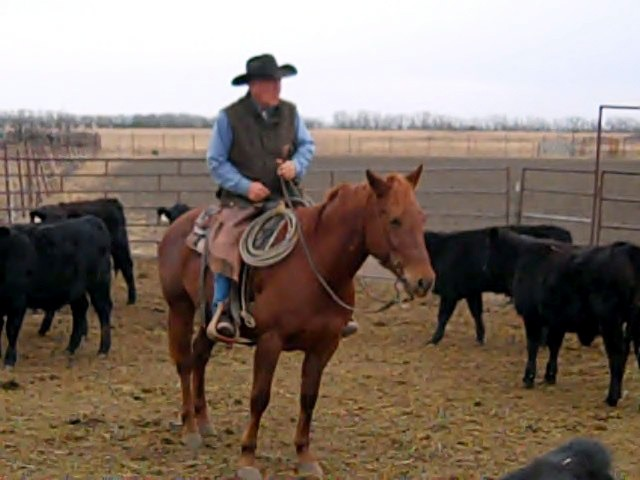Always a cowboy, Carl Lee Stueve, inspiring dad and teacher, now champion poet, forever enjoys mounting up to check cattle at his Olpe ranch.