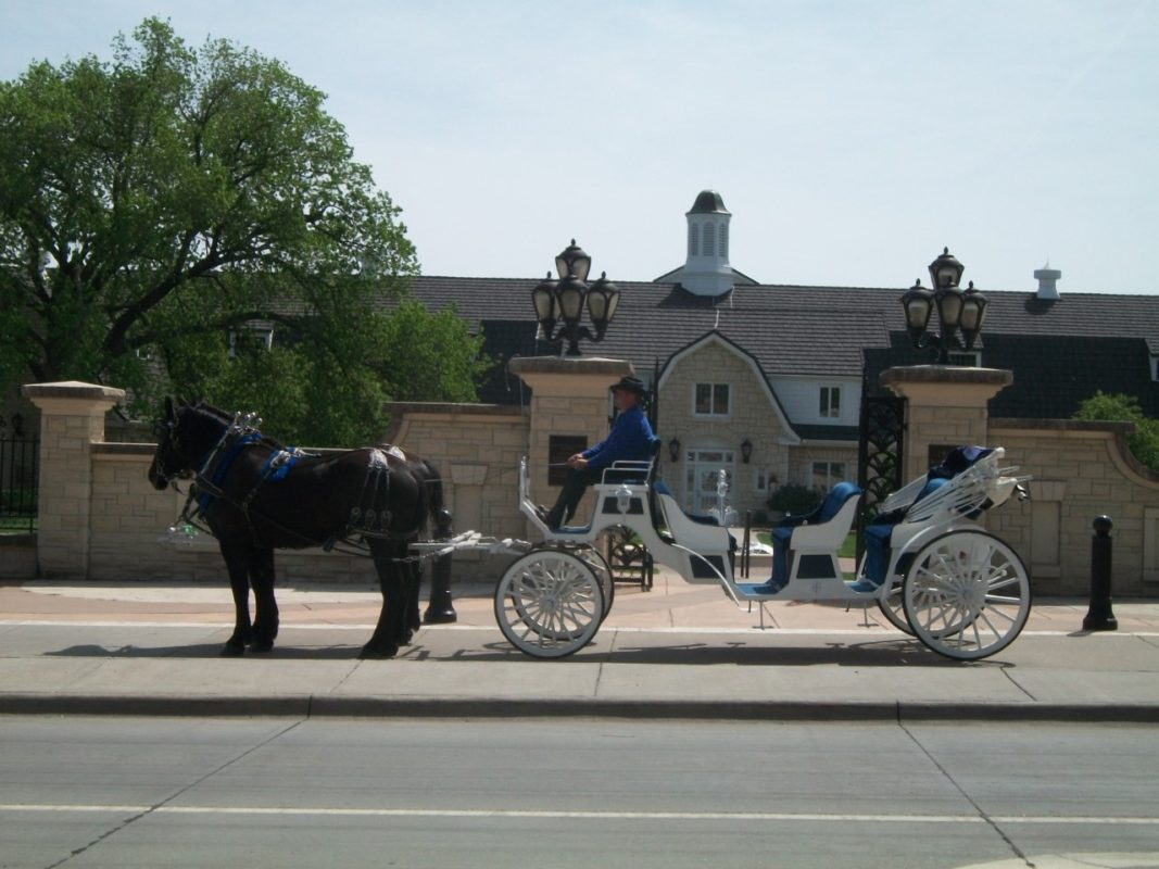 When it's a formal affair, 3C Carriage Service of White City gets formal, too, with the luxurious white Visa-A-Vis limousine powered by their magnificent black Percheron mares.