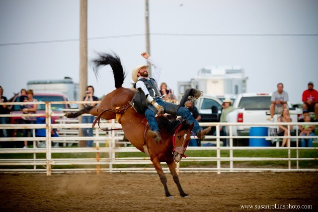 Cody Askren, Holton, lifelong Circleville Saddle Club member, placed second in bareback bronc riding at the first Circleville Rodeo last year. A top slate of bareback and saddle bronc riders as well as outstanding cowboys and cowgirls have entered to compete in all events at this year's Circleville Rodeo, Friday and Saturday evenings, Aug. 8 and 9, at the Circleville Saddle Club Arena. (Photo by Susan Rollins.)