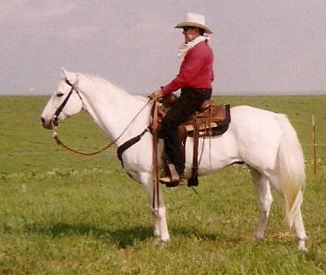 Horse10001