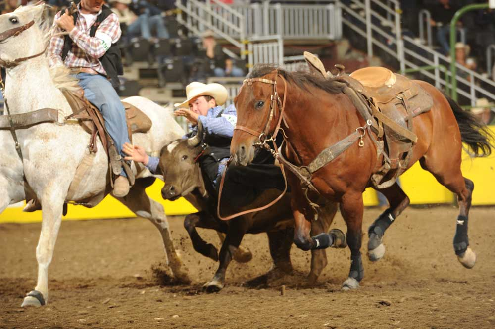 As a member of the Kansas State University Rodeo Team, Tanner Brunner. Ramona, placed first in the third go-round of steer wrestling with a time of 4.1 seconds at the recent National College Finals Rodeo in Casper, Wyoming. En route to the national competition, Brunner won the steer wrestling event in the Central Plain Region of the National Intercollegiate Rodeo Association. (Photo courtesy of rodeo photographer Dan Hubbell.)