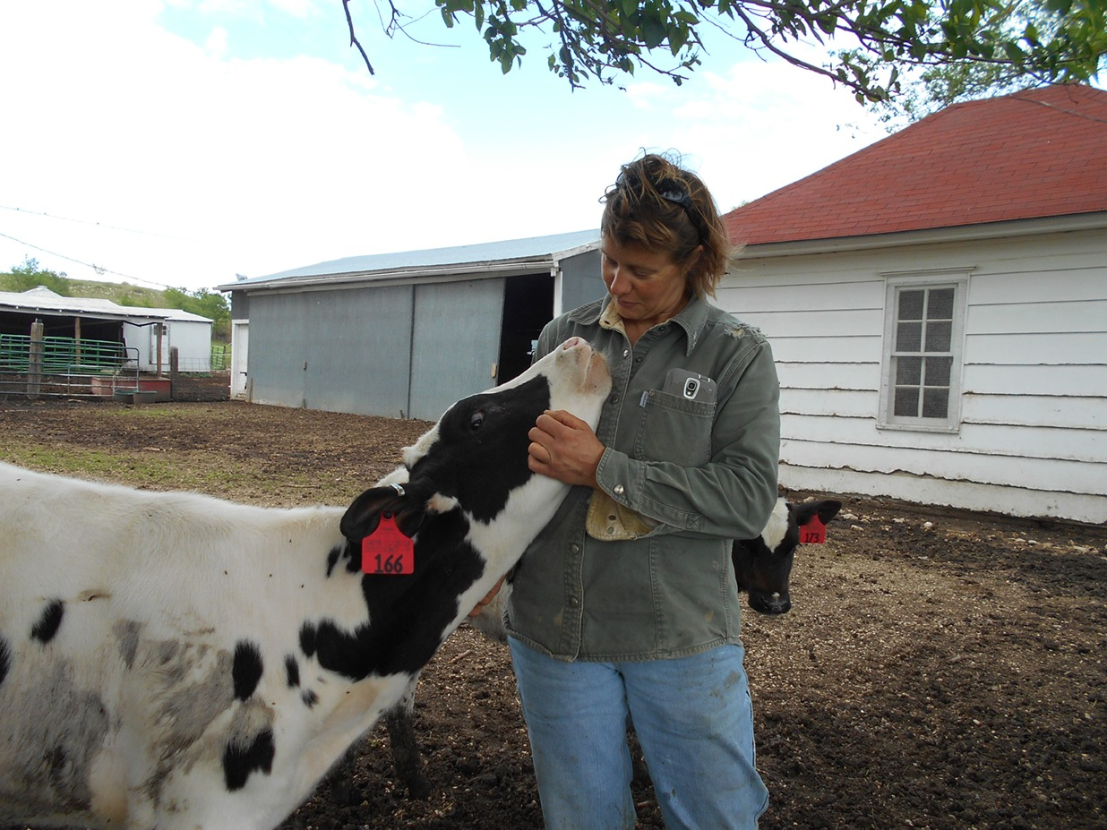 Holstein cows and Ria Vos are close friends at Vos Dairy near Cedar Point. They all have personal names, and know them when their Milkmaid calls at feed time, milk time or just a friendly visit.