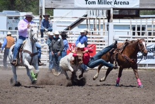 The top high school steer wrestler in the state, J.D. Draper, Oakley, runner-up all-around cowboy in the Kansas High School Rodeo Association, shows his championship form on his 23-year-old mare called Suzy