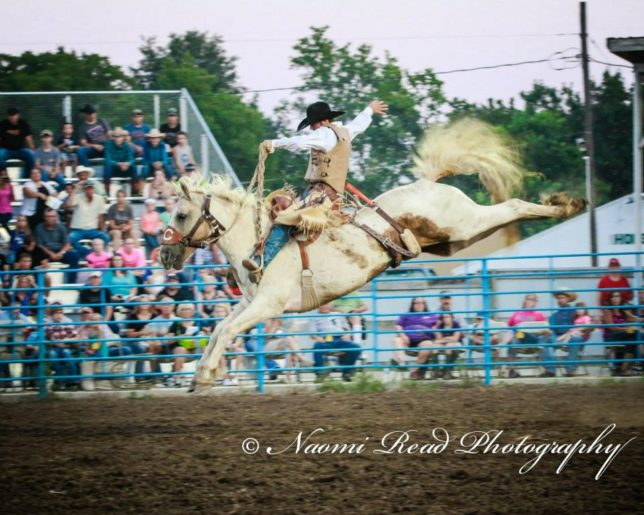 Hardy Braden, Welch, Oklahoma, won the saddle bronc riding with 84 points on New Frontier Rodeo's Tear Drop (shown) at the Mound City rodeo, and marked 76 points on United Pro Rodeo's  Viper, to collect $1,034 total, and be the Eastern Kansas Pro Rodeo Series champion in saddle bronc riding. (Photo by Naomi Read Photography.)