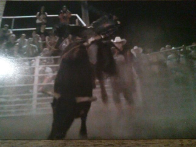 Cody Hunsperger of Yates Center shows his championship style winning the bull riding at the Gardner Rodeo on Overstreet, an outstanding rodeo bull, with sons now in the draw at rodeos and bull ridings around the Midwest, including the Flint Hills Bull Blowout, Saturday night, Sept. 12, at Strong City.