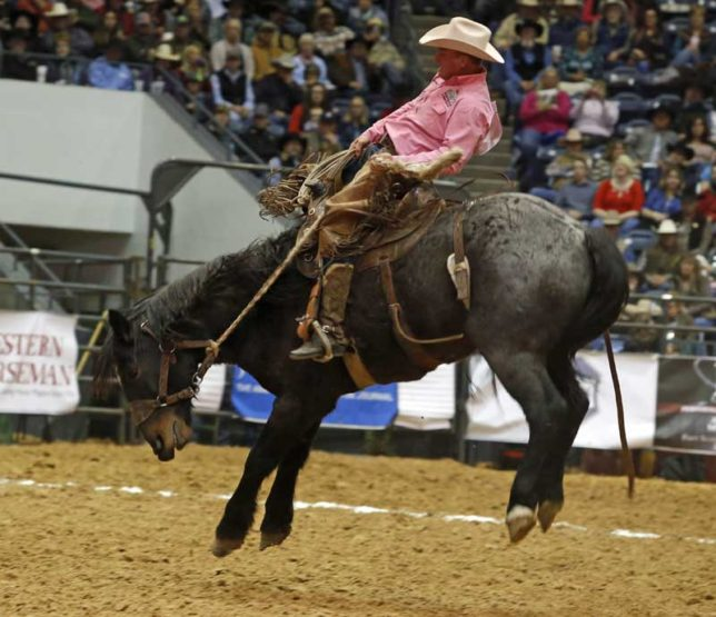 Persistency has been the key to marked rides in the ranch bronc riding at the World Championship Ranch Rodeo as Bruce Beeman of Grenola rides a Harry Vold bronc named Dusty Valley to a score of 77 points, in the second go-round of the 2013 rodeo at Amarillo. (Photo from the Working Ranch Cowboys Association.)