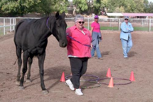 Kathy Pelletier leads a horse around an obstacle during an equine-assisted psychotherapy session conducted by Wanda Whittlesey-Jerome (right), associate professor of social work at New Mexico State University Albuquerque Center.