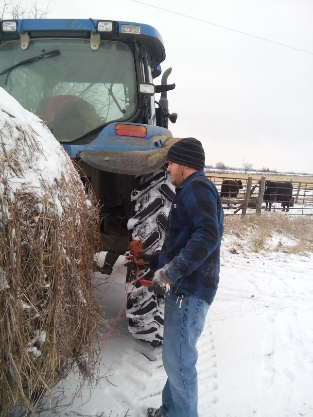 A cowherd is the perfect supplement and complement to cropping operations at Phelon Farms near Melvern as Adam Phelon was out doing chores during inclement weather last week for the family partnership he has with his dad Raylen Phelon.