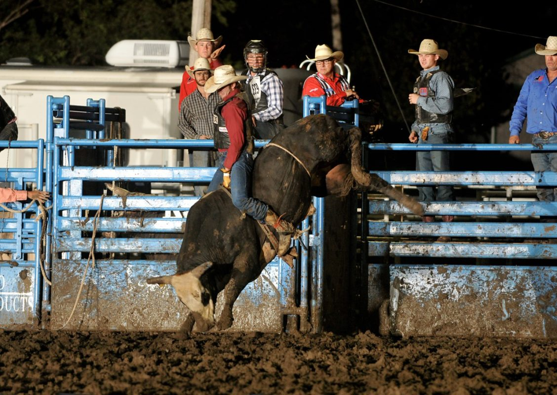 Guthrie Murray, Miami, Okla., was the bull riding champion in the Eastern Kansas Pro Rodeo Series winning first at Coffeyville and both performances of the two go-round Eureka rodeo, as well as competing at the Linn County Fair-Rodeo in Mound City. (Dale Hirshman photo)