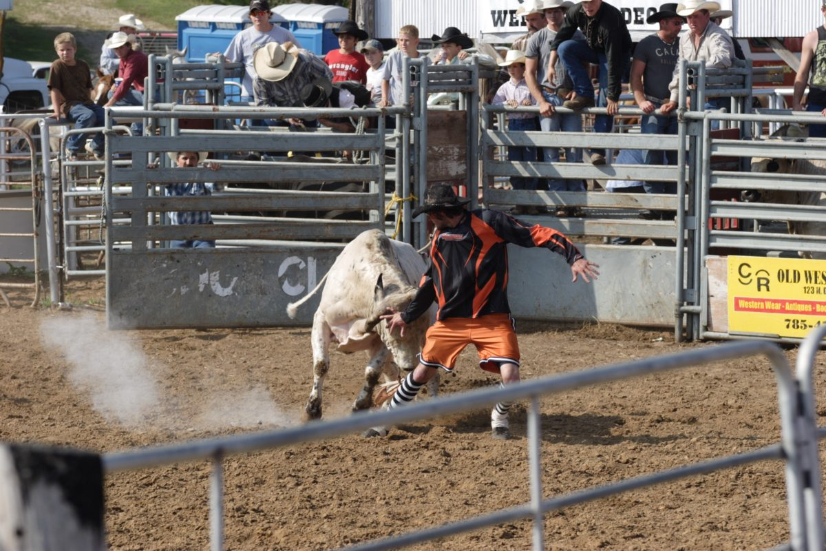 Randall rancher Mark Peters shows his form saving a cowboy from a rank New Frontier Rodeo Company bucking bull during the annual Brookville Rodeo.