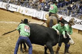 Repeat winners at the Kansas Championship Ranch Rodeo in Medicine Lodge, cowboys on the Lonesome Pine Ranch team from Cedar Point show their diversity as working cowboys as they milk a wild cow featured event at many Working Ranch Cowboys Association sanctioned ranch rodeos.